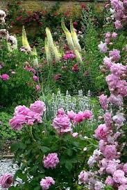 beautiful flower gardens images beautiful home gardens pictures