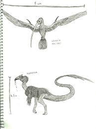 rhavtor and vampire hummingbird sketch by titanlizard on deviantart