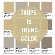 taupe the color what colors go with taupe hunker show me the color taupe colors go