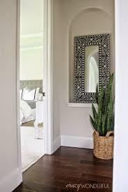 home decor indoor plants the coastal oak