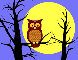 owl in tree clip owl in tree free clip give a hoot