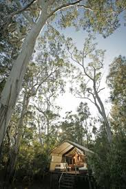 45 Best Cool Cabins Images On Pinterest Cabins Catering And