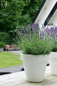 how to have large flower pots outdoors hand made home and garden