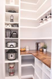 narrow depth kitchen storage cabinet our diy custom walk in pantry progress and reveal