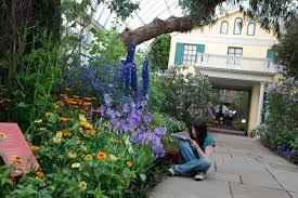 recreating emily dickinson u0027s gardens harvard university press blog