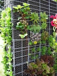 How To Build Vertical Garden - 53 best vertikale tuin images on pinterest landscaping living