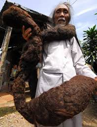longest crotch hair world s longest hair imgur