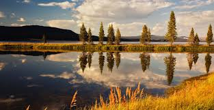 yellowstone national park vacation travel guide and tour