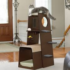 Cat Trees For Big Cats Best Carpet For Cat Condo Carpet Vidalondon