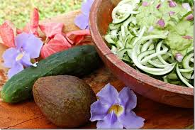 the yin yang of health and why raw food doesn u0027t cut it bloom