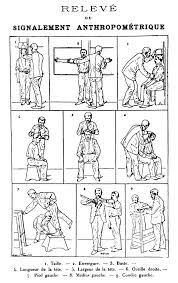history of anthropometry howlingpixel