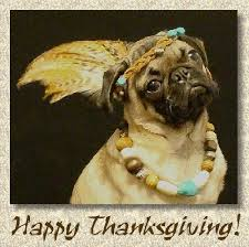 doggonegreetings ecards for thanksgiving pug