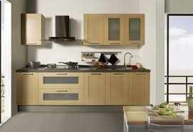 Best Kitchen Cabinet Liners Wonderful Design Of Motor Illustrious Mabur Beautiful Yoben