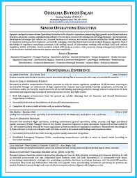 Best Resume Format For Uae by Brilliant Corporate Trainer Resume Samples To Get Job