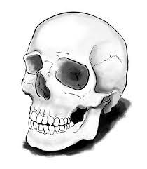 how to draw a skull sketchbook challenge 8 sketchbooknation com