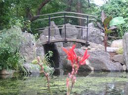 Clark Botanical Gardens Clark Botanic Garden Dunneiv Org