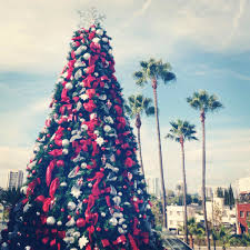 Christmas Decorations Palm Tree by Merry Christmas A Happy New Year This Beautiful Day