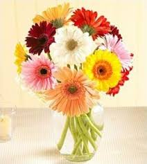 Flower Com Send Flowers To Colombia Flower Shop And Florist In Colombia