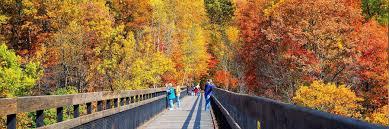 in fall best fall colors laurel highlands or vermont u2014 laurel highlands