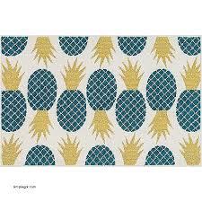 Pineapple Area Rug Luxury Pineapple Area Rug Simplegpt