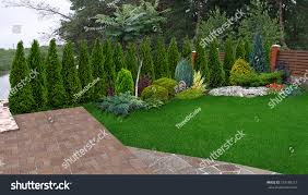 Small Backyard Landscaping Ideas For Privacy by Landscaping Privacy Ideas Home Design Ideas