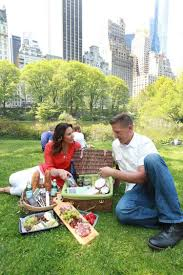 all the fixins for a picnic in the park with no fuss ny daily news