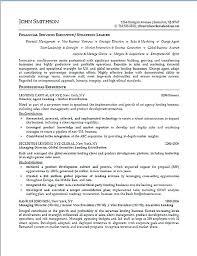 senior executive resume sales manager resume template senior executive resumes exle hotel