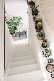 best 25 plant decor ideas on pinterest house plants 278 best succulents and house plants images on pinterest home