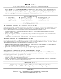Director Of Ecommerce Resume Resume Bullet Points Examples Resume Example And Free Resume Maker