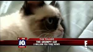 Tard The Grumpy Cat Meme - tardar sauce the grumpy cat youtube