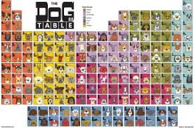 periodic table of dogs dog of the day newfoundland angry squirrel studio