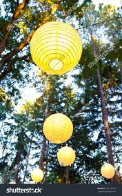yellow wedding decorations hang trees wedding stock photo