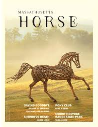 Massachusetts travel pony images Massachusetts horse june july 2015 by community horse media issuu jpg