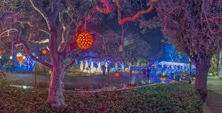 phipps conservatory christmas lights project winter light garden codaworx