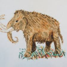 hairy elephants elephant spoken