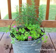 container herb garden hometalk