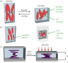 electroactive polymers for sensing interface focus