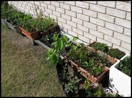 patio vegetable garden planters patio decoration ideas