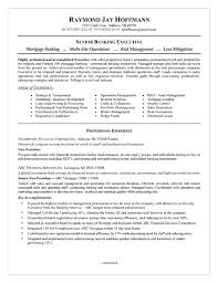 Job Resume Summary Examples by Mortgage Banker Resume Example Resume Examples