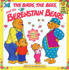 the berenstain bears and baby makes five the berenstain bears