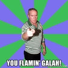 Patrick Stewart Meme Generator - you flamin galah alf stewart pointing meme generator
