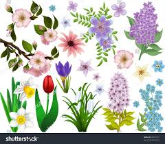 set spring flowers all elements grouped stock vector 76977331