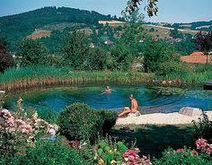 Natural Backyard Pools by 23 Breathtaking Natural Swimming Pools Gardens Swimming And