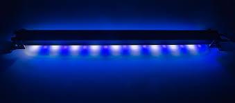 Led Aquarium Light Fixtures 36 High Power Led Aquarium Light Fixture Specialty High Power