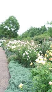 Barnhill Rock Garden by 70 Best Scotland Images On Pinterest Inverness Scotland