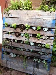 How To Build A Vertical Wall Garden by Diy Vertical Succulent Garden Blush U0026 Bloom