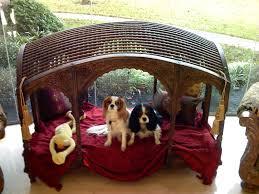 Decorations Classic Wood Dog House Design Ideas Creative and Fun