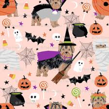 yorkshire terrier yorkie halloween costumes cute dog fabric fall