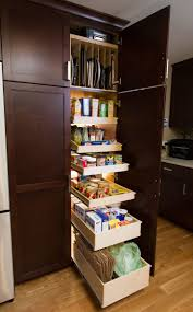 Slide Out Spice Racks For Kitchen Cabinets by Best 25 Slide Out Pantry Ideas On Pinterest Kitchen Spice Racks