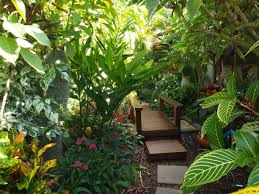 Mediterranean Backyard Landscaping Ideas by Tropical Garden Canopy Plants Google Search Mediterranean
